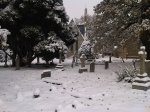 churchyard in the snow
